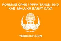 Formasi CPNS / PPPK / P3K Kabupaten Maluku Barat Daya 2019