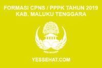 Formasi CPNS / PPPK / P3K Kabupaten Maluku Tenggara 2019