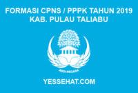Formasi CPNS / PPPK / P3K Kabupaten Pulau Taliabu 2019