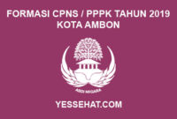 Formasi CPNS / PPPK / P3K Kota Ambon 2019
