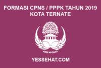 Formasi CPNS / PPPK / P3K Kota Ternate 2019